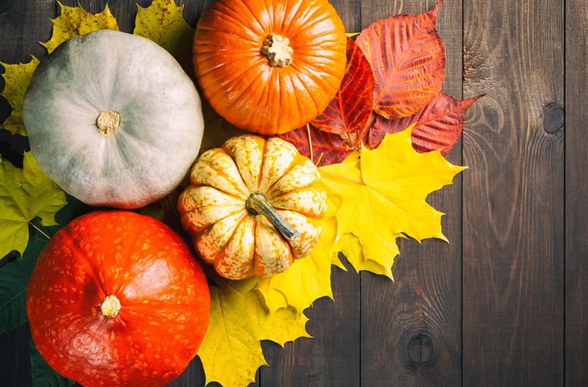 Dovleacul, leguma principală a sezonului. Află ce beneficii îți poate aduce