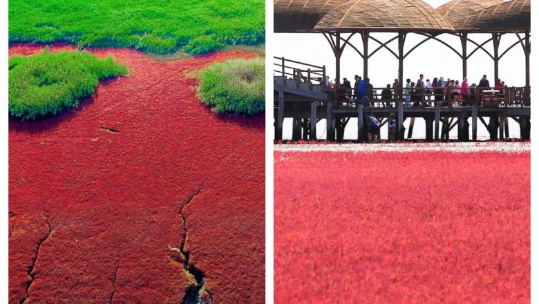 Oamenii sunt fascinați de Plaja Roșie, unul dintre cele mai pitorești locuri de pe Pământ