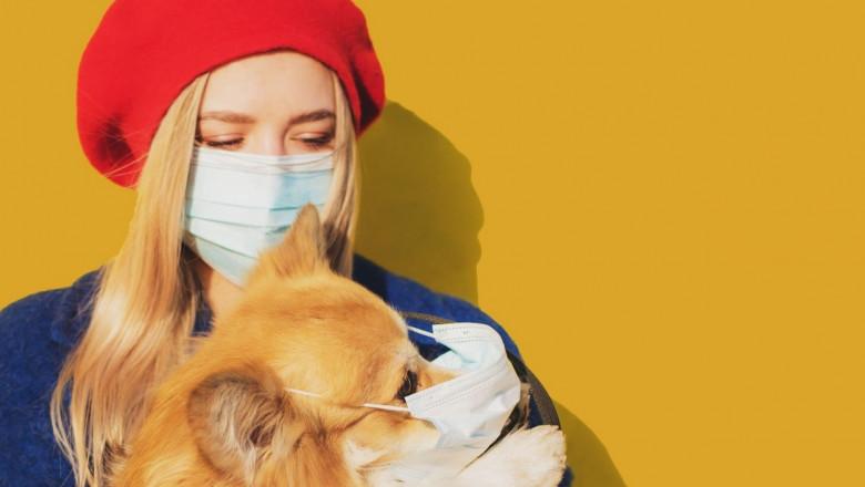 Rusia a produs primul lot de vaccin anti-Covid-19 din lume pentru animale