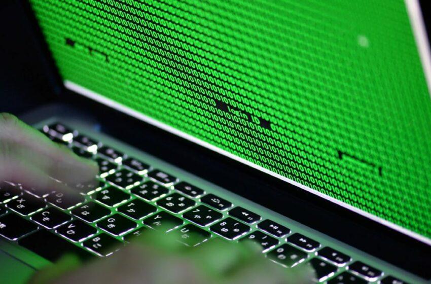 Internetul, plin de pericole: cum au ajuns companiile să tremure în fața hackerilor