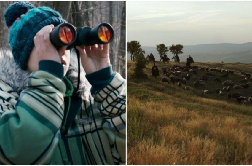 """""""Cel mai bun documentar"""" și """"Cel mai bun sound design"""", pentru un regizor moldovean, la festivalul de la New York"""